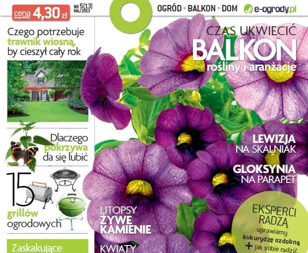 Okładka miesięcznika Magnolia 05/2013