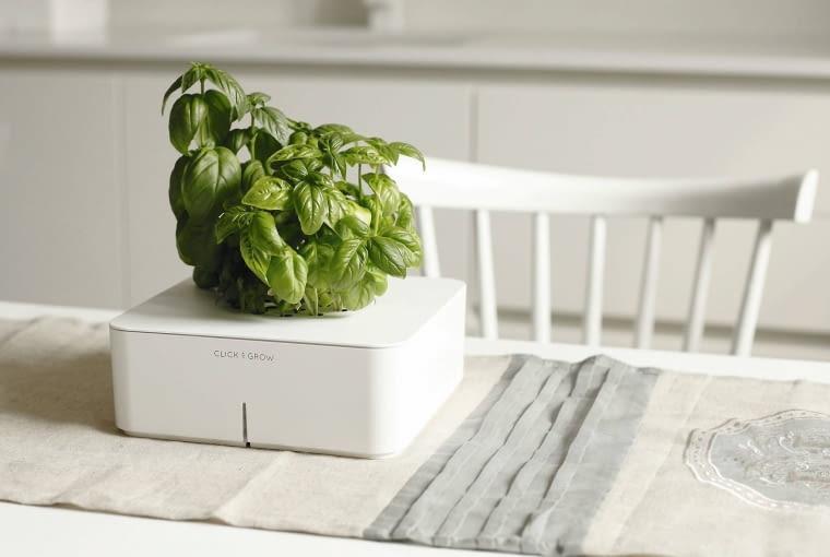 Elektroniczny ogródek Click & Grow to rozwiązanie dla zabieganych ogrodników - dzięki czterem bateriom AA, czujnikom, pompce, pojemnikowi na wodę i systemowi nawożenia samo podlewa i dokarmia rośliny.