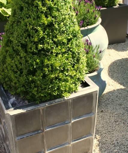 Ulubione rośliny (zwłaszcza iglaste) warto sadzić w wysokich ciężkich donicach.