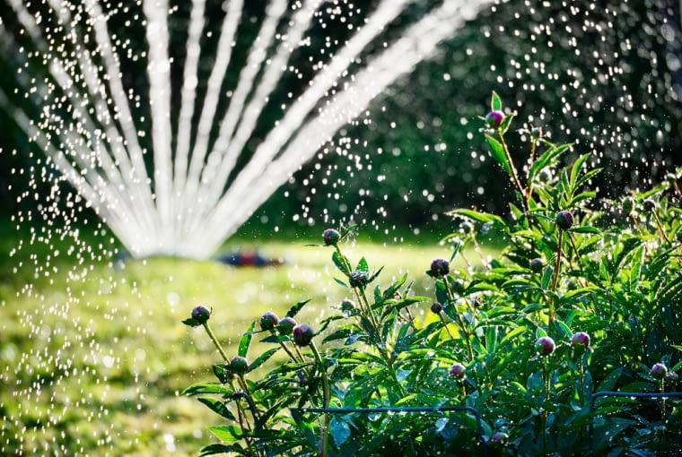 Automatyczne nawadnianie ogrodu - zalety i wady