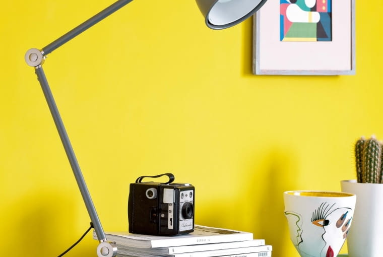 Dzięki dużej ilości pigmentów farba ma żywe kolory. Jest również odporna na szorowanie - pomalowana nią ściana może nawet pełnić rolę tablicy.
