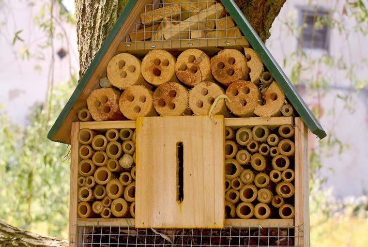 Domek dla owadów - czytelny symbol ekologicznego myślenia.