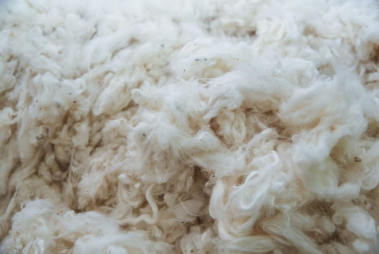 Better Cotton Initiative, uprawa bawełny, bawełna IKEA