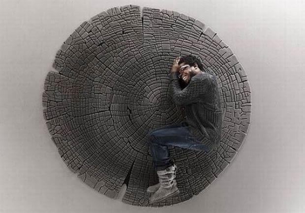 Dywan, przekrój drzewa