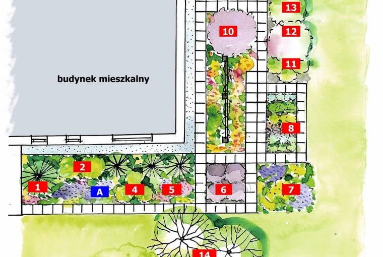 projekt z ziołowym ogródkiem