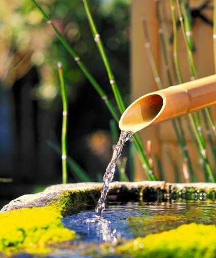 Bambusowe źródełko - symbol mocy wodnego żywiołu, często spotykany w japońskich ogródkach