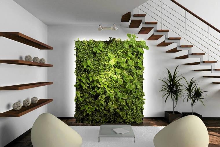 rośliny ozdobne, kwiaty w domu, zieleń