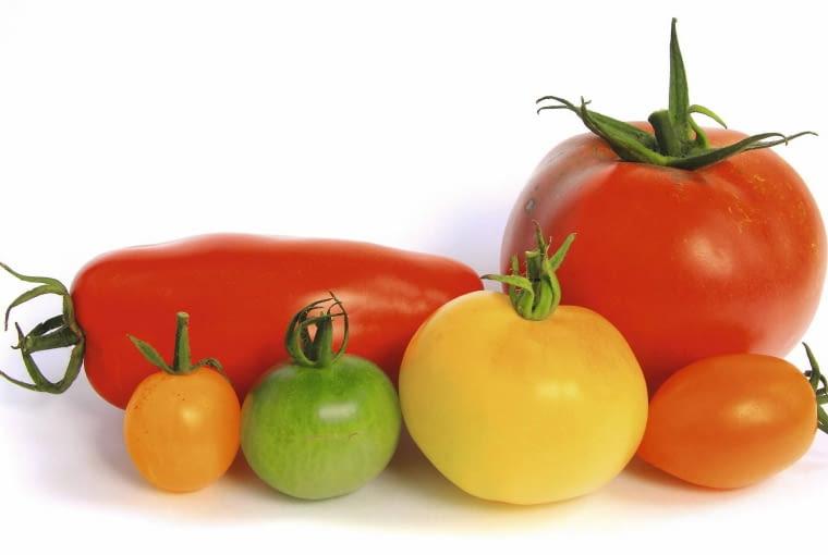Pomidory różnią się wielkością i kształtem. Najmniejsze koktajlowe mają 0,8 cm średnicy, typowe kule - 10 cm, a walcowate - długość ok. 13 cm.