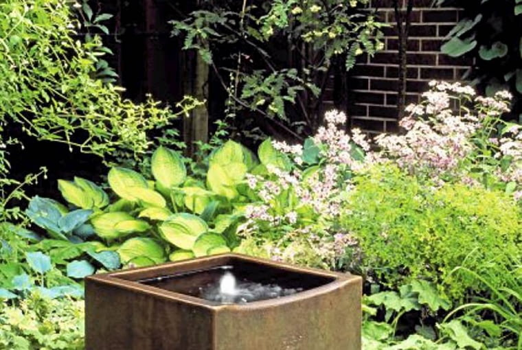 In a small suburban garden, a ceramic tank has been recycled from an old brewery to make a water feature. Surrounded by a planting of Hostas, Asters and Alchemilla mollis.