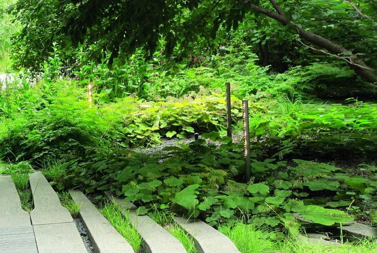 W niektórych zakątkach parku rośliny tworzą dzikie z pozoru zarośla - taki był właśnie zamysł projektanta.
