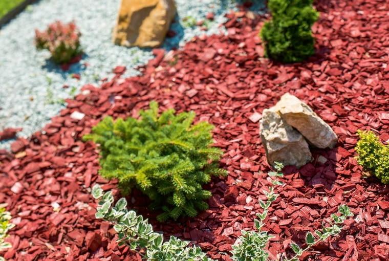 Barwione zrębki drewniane ciekawie komponują się zroślinami.