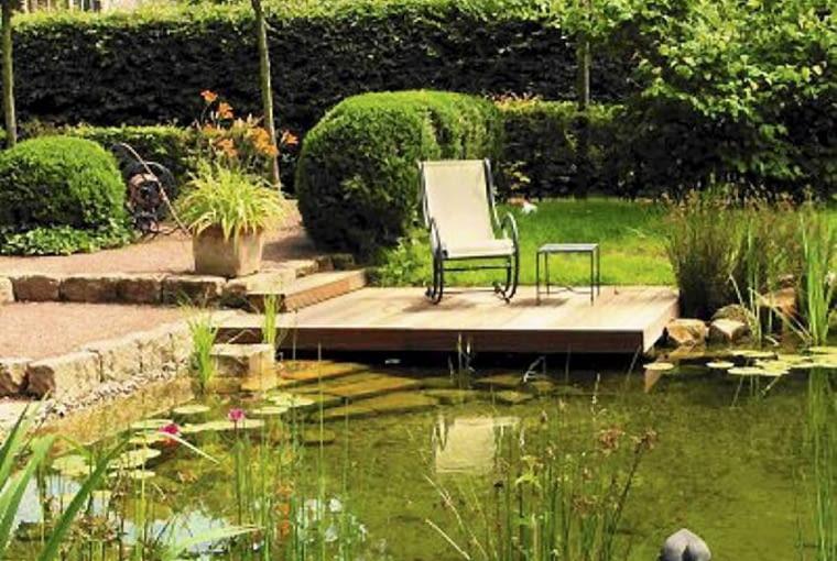 W stawach kąpielowych rośliny czyszczące wodę pełnią też funkcję dekoracyjną