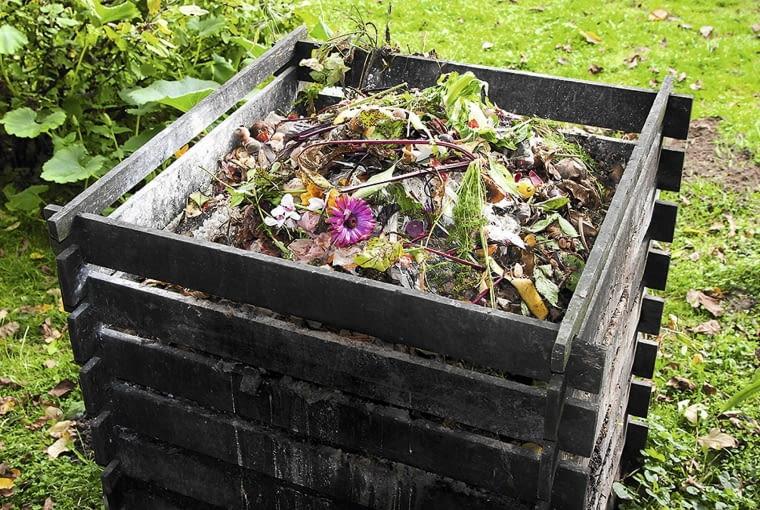 KOMPOSTOWNIK to miejsce rozmnażania wielu pożytecznych organizmów, które później, wraz z rozłożonym kompostem, trafią do gleby w ogrodzie.