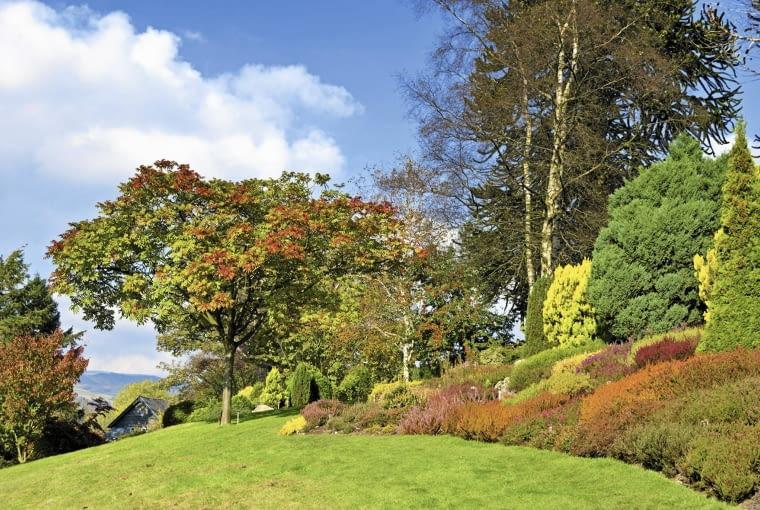 Nasłonecznione zbocze płonie jesienią kolorami wrzosów o różnych odcieniach kwiatów i liści.