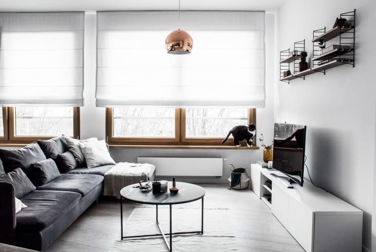 Jak na mieszkanie miłośników Skandynawii przystało, dużą część wyposażenia stanowią szwedzkie meble, jak tu, w kąciku telewizyjnym, znajdziemy szafkę Besta oraz półki String.