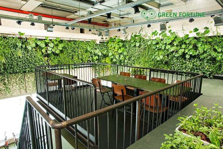 Zielona ściana, Trouw, Holandi
