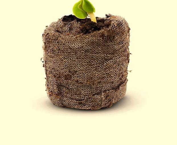 Siatkowe doniczki pozwalają na swobodne przerastanie korzeni. One także umożliwiają sadzenie rozsady do gruntu bez wyjmowania z pojemnika