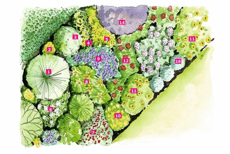 Rośliny na rabacie