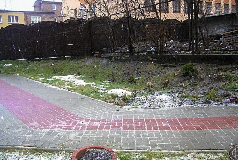 stan obecny, ogródek pod blokiem