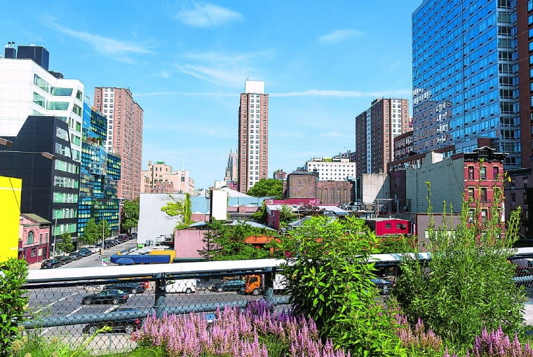 """Kępy różowych tawułek, """"potarganej"""" trawy ostnicy i krzewów stanowią ramy dla widocznego wokół pejzażu Nowego Jorku."""