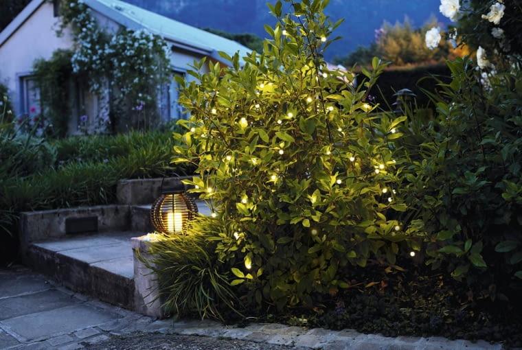 Świetnym uzupełnieniem wieczornej scenerii jest tzw. światło magiczne. Jego źródłem mogą być żaróweczki na długich przewodach oplatające konary.