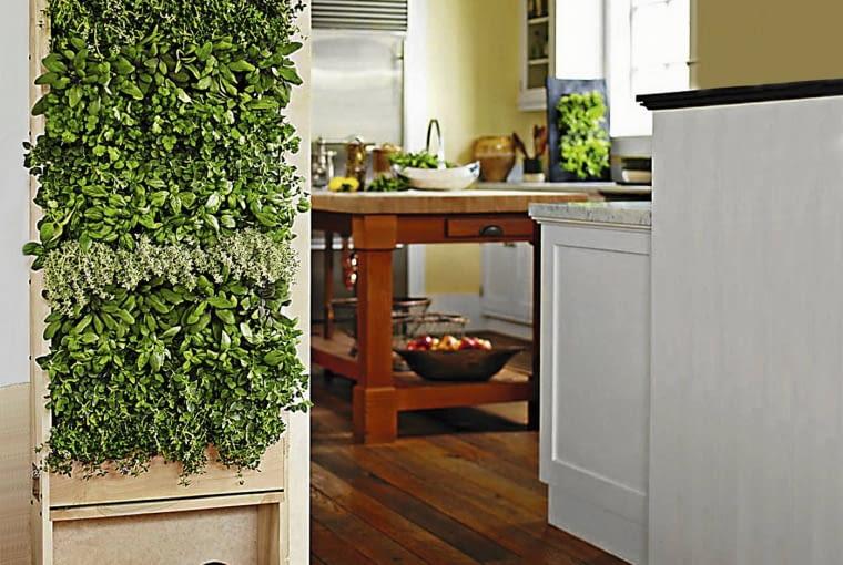 Kuchenna zielona ścinka pełna ziół, m.in. bazylii, tymianku, pietruszki, szałwii, zaaranżowana na panelu Florafelt