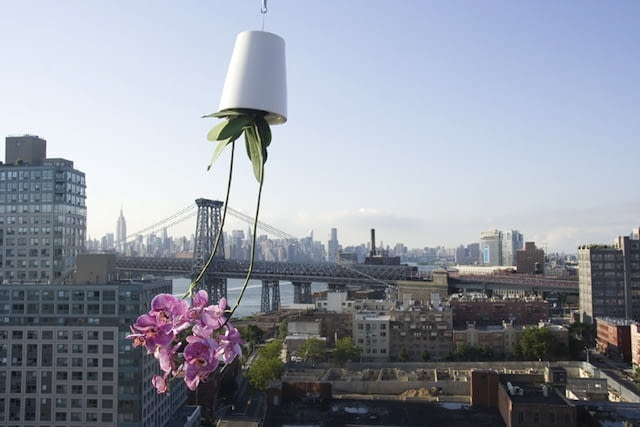 Sky Planter; projekt: Patrick Morris
