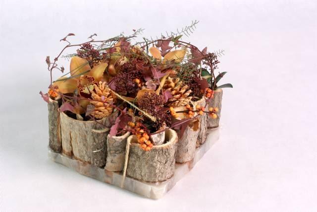 W woskowej podkładce dla storczyka cymbidium, skimmii, bluszczu i paproci gleichenii zatopiono nibywazony z kory