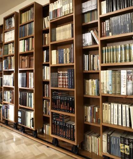 WNETRZA POKOJ SALON Z BIBLIOTEKA WNęTRZA KSIążKI MEBLE biblioteka aranżacja