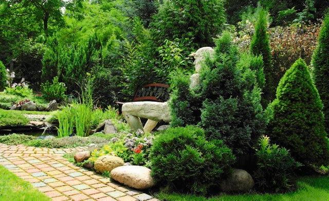 Iglaki będą zdobić ogród cały rok, jeśli tylko odpowiednio o nie zadbamy.