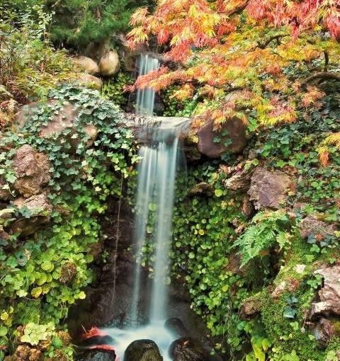W japońskim ogrodzie często pojawia się wodospad. Plusk i szmer wody skłania bowiem do kontemplacji.
