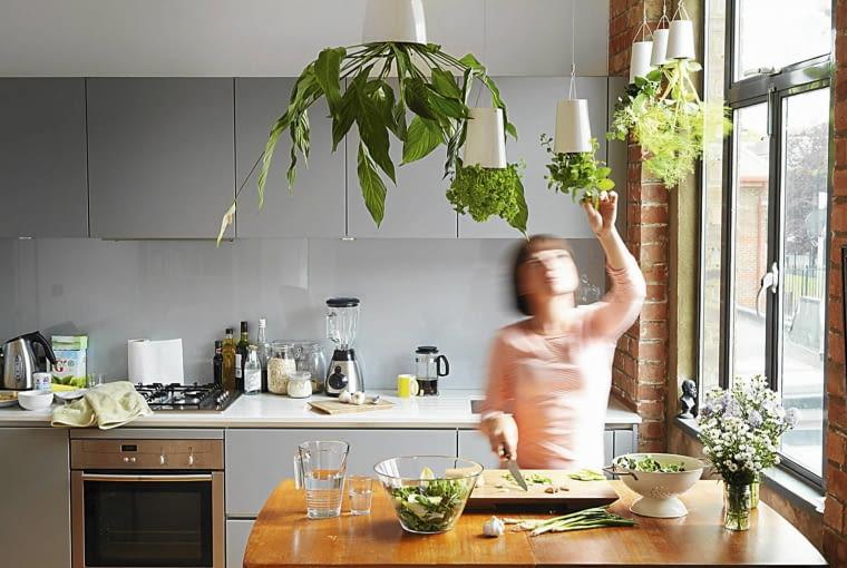 'Odwrócone' doniczki Sky Planter bez wątpienia stawiają na głowie tradycyjne ogrodnictwo.