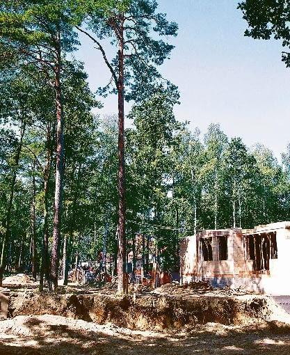 BUDOWA DOMU NA DZIALCE POROSNIETEJ DRZEWAMI FOT. PAWEL SLOMCZYNSKI PUBLIKACJA LADNY DOM NR 9 (71) - 9.2004