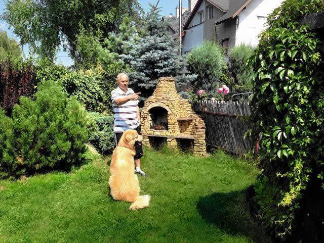 Pan Tomasz w swoim ogrodzie z Howardem - ośmioletnim psem rasy Hovawart.