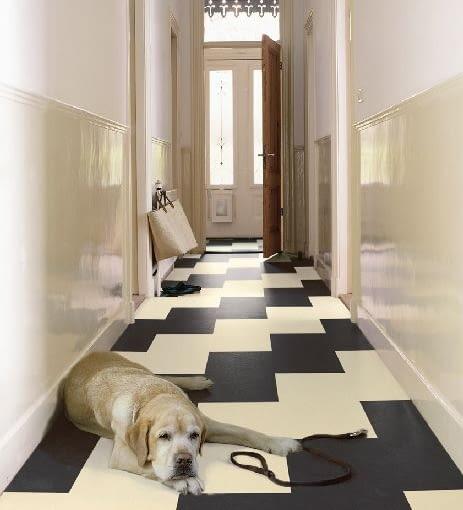 aranżacja wnętrz,korytarz,wejście do domu