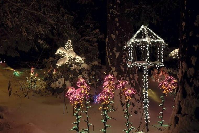 Odświętne oświetlenie ogrodu. Dzięki barwnym diodom w ogrodzie nawet w środku zimy mogą zakwitać kolorowe kwiaty