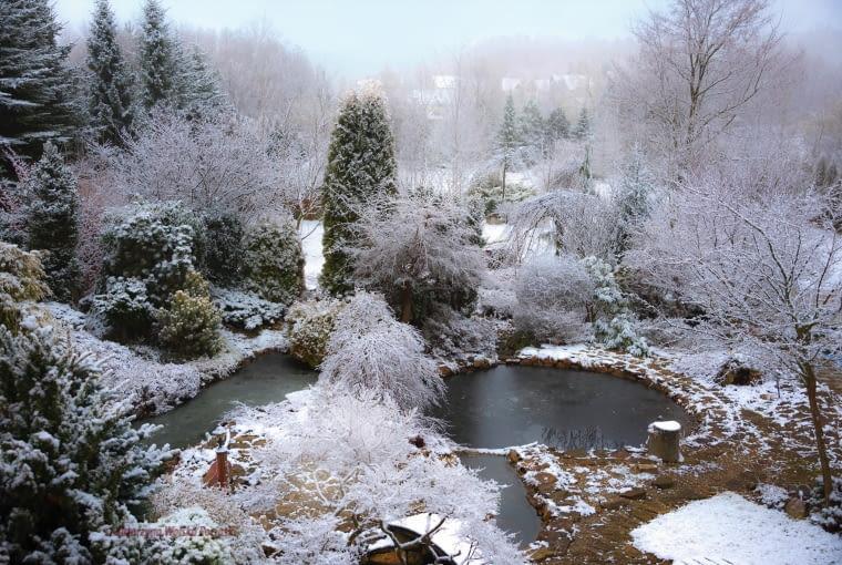 ZIMOWA SZADŹ zmienia ogród nie do poznania - białe kaskady i bryły to prawdziwe ogrodnicze zagadki.