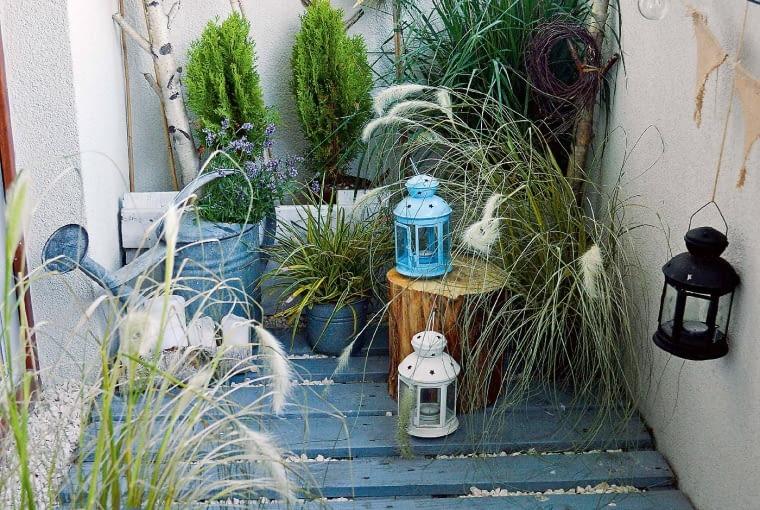 Drugi koniec balkonu oddałam we władanie roślinom, m.in. tujom, sosenkom na pniu imoim ukochanym trawom ozdobnym: miskantowi irozplenicy (kwiatove.pl).