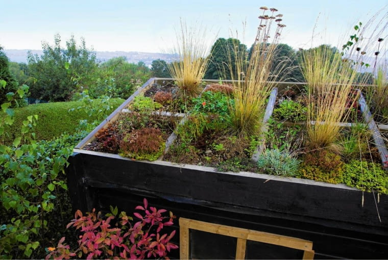 The Green roofed shed - Nigel Dunnett's garden SLOWA KLUCZOWE: Bepflanzung Bio Blumen Dach Garten Gr ser Schuppen Sedum Wildlife anpflanzen bepflanzen bl´hend einpflanzen freundlich gr´n in der freien Natur nat´rlich schwarz
