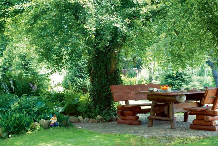 Pod rozłożystym okapem głogu urządzono miejsce na ogrodowe biesiady - w upalne dni jest tu znacznie chłodniej niż na tarasie.