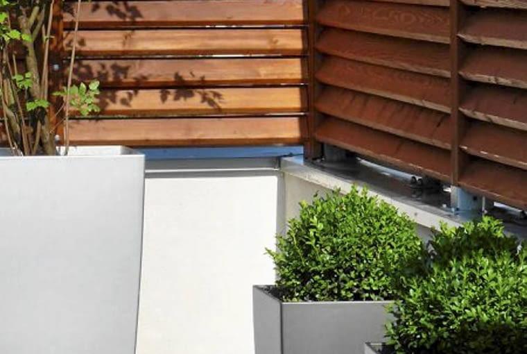 Rośliny balkonowe. Wybrane gatunki roślin mają niewielkie wymagania pielęgnacyjne. Formowane bukszpany będą jednak wymagały stałego przycinania