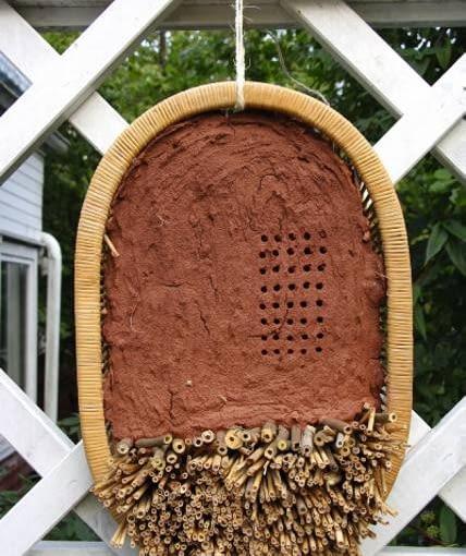 Gniazdo w wiklinowym koszu z gliny zmieszanej z sieczką słomianą i trzciny