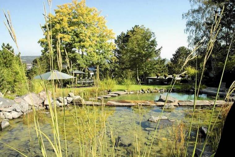 Staw kąpielowy w stylu naturalistycznym. Kamienna grobla jest tu krawędzią kaskady oddzielającej część kąpielową od strefy czyszczącej