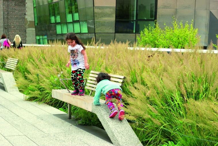 Na rabatach królują odporne trawy; tu kwitnący trzcinnik (Calamagrostis).
