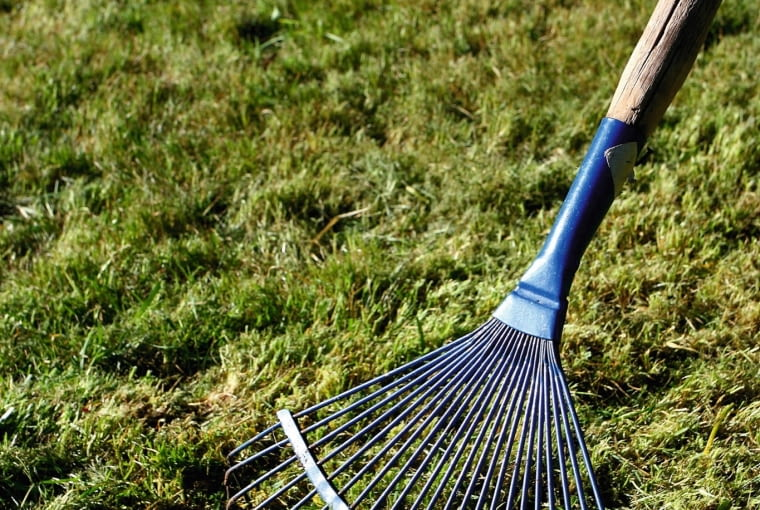 Stare pędy traw, mech i zgniłe liście tworzą na trawniku filc, który trzeba wiosną dokładnie zgrabić.
