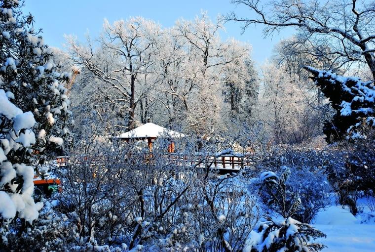 Wprawdzie zimą ogród jest zamknięty, ale przez ogrodzenie dostrzeżemy słynny mostek i pawilon na stawie.