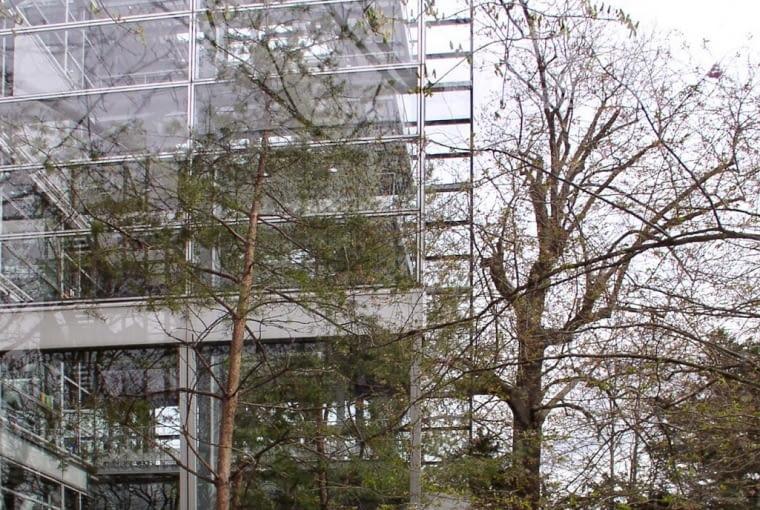 Budynek Fundacji Cartiera w Paryżu, fot. TS