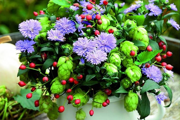 Malowniczy bukiet zastrów bylinowych iszyszek chmielu. Wesołym akcentem są owoce dzikiej róży.