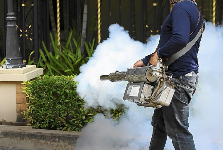 Przed planowanym przyjęciem w ogrodzie można zlecić specjalistycznej firmie rozpylenie preparatu odstraszającego komary.