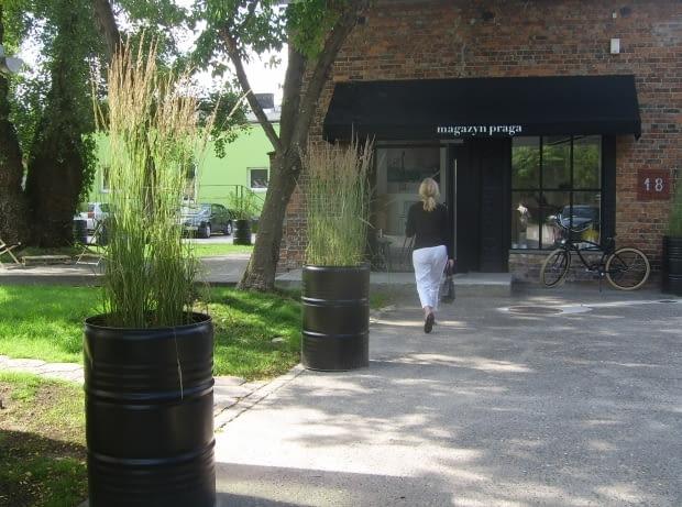Przed Galerią Magazyn Praga trawy ozdobne w beczkach. Świetny pomysł!